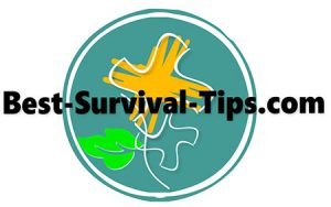 Home, Best Survival Tips and Techniques