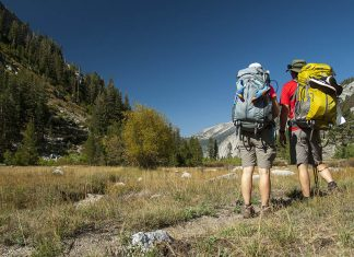 Back Packing Survival Tips